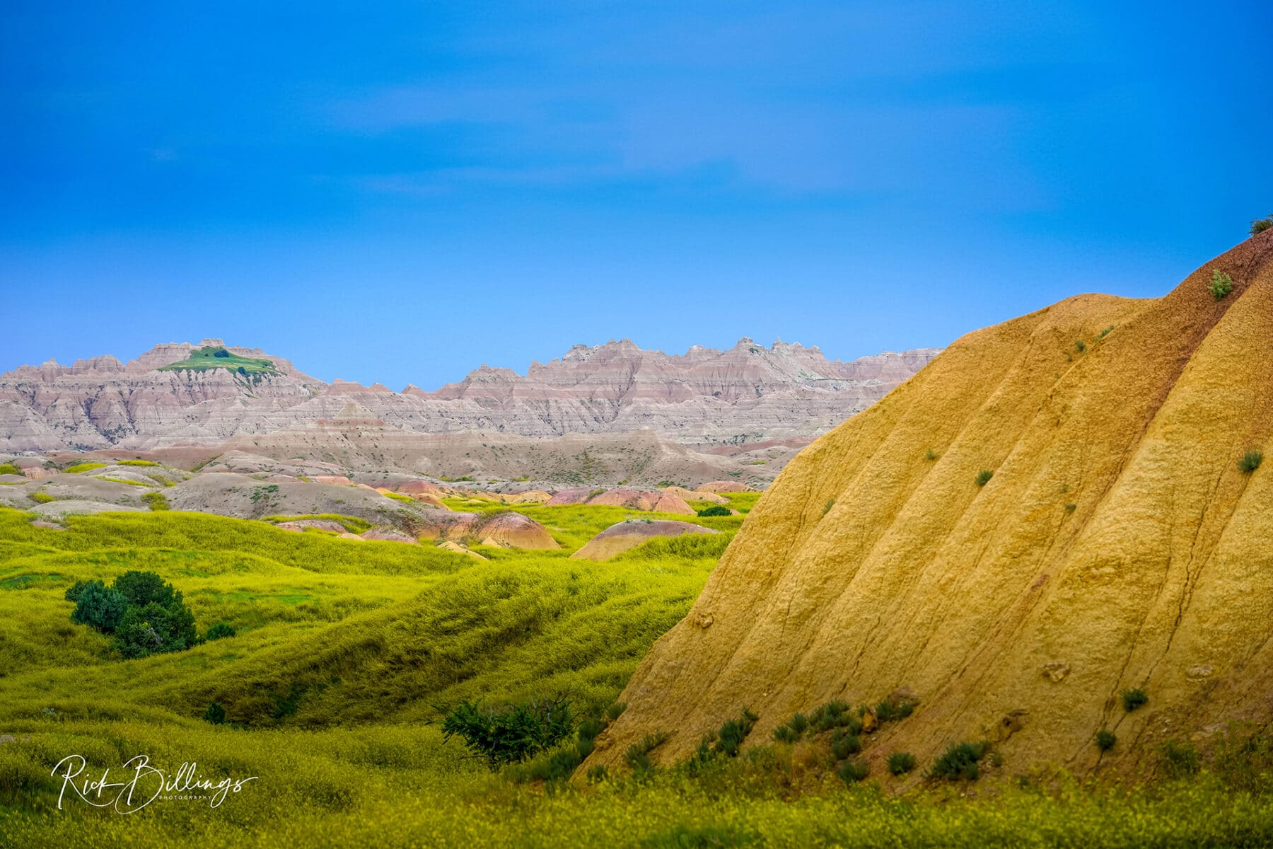 No 1009 20190811 Badlands Yellow Mounds