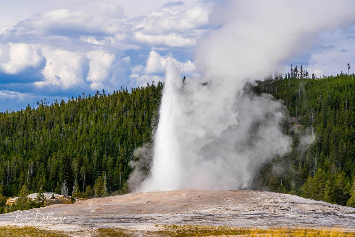 No 1043 20190820 Yellowstone Old Faithful