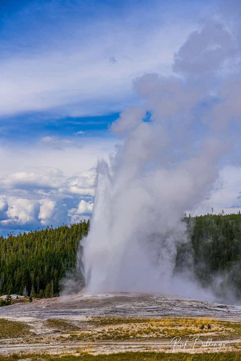 No 1045 20190820 Yellowstone Old Faithful