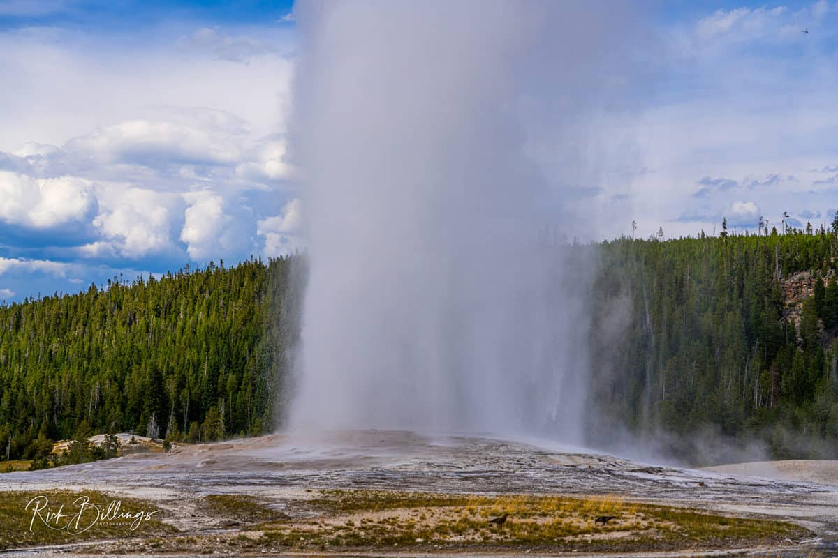 No 1046 20190820 Yellowstone Old Faithful