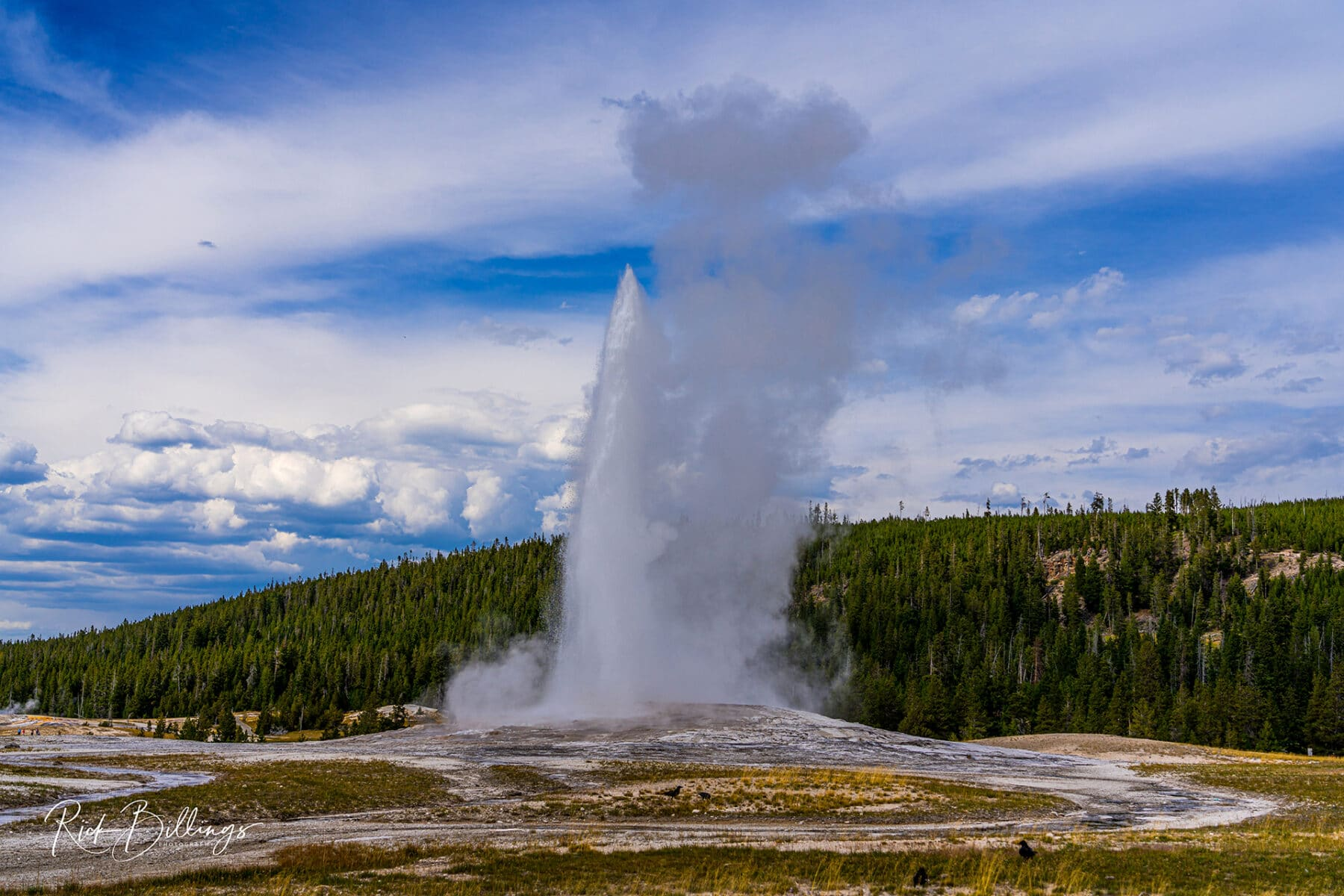 No 1047 20190820 Yellowstone Old Faithful