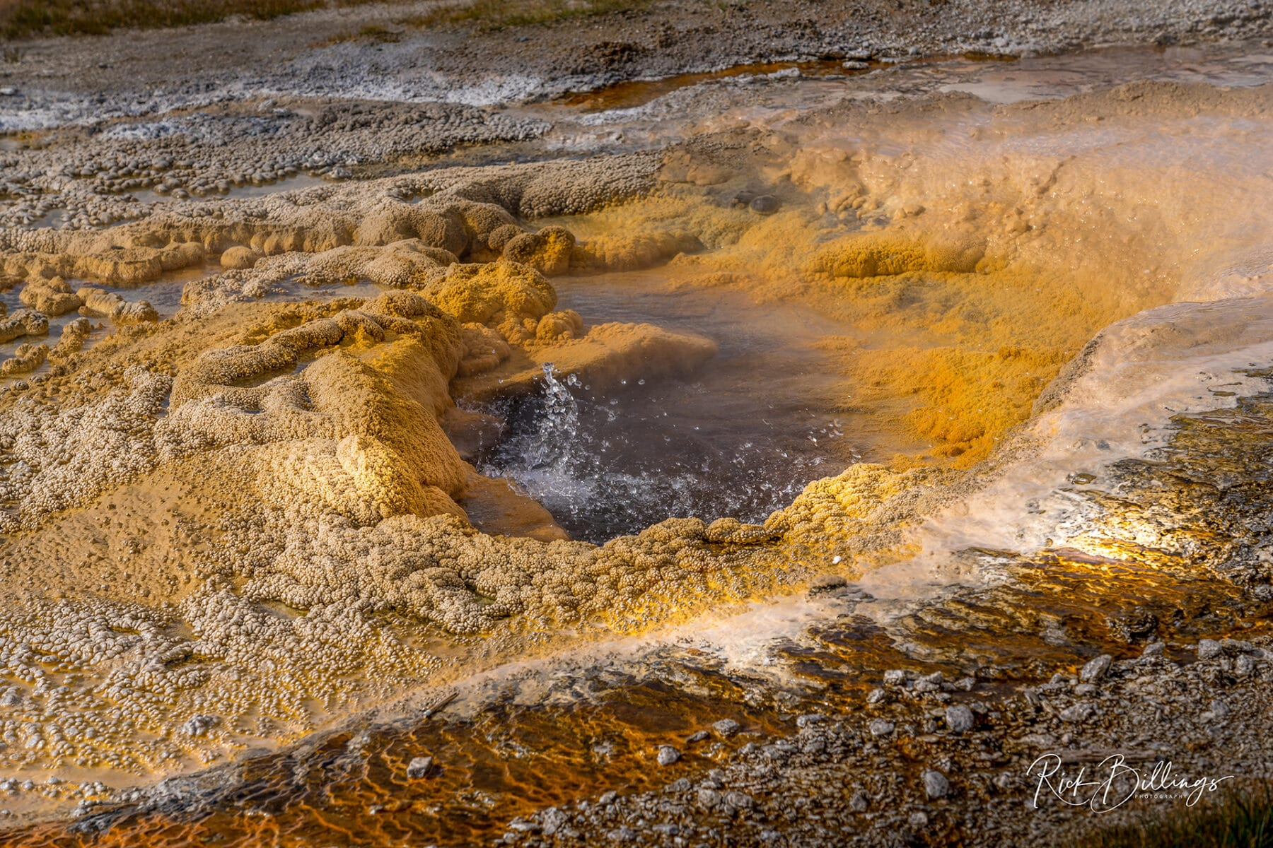 No 1048 20190820 Yellowstone Pump Geyser