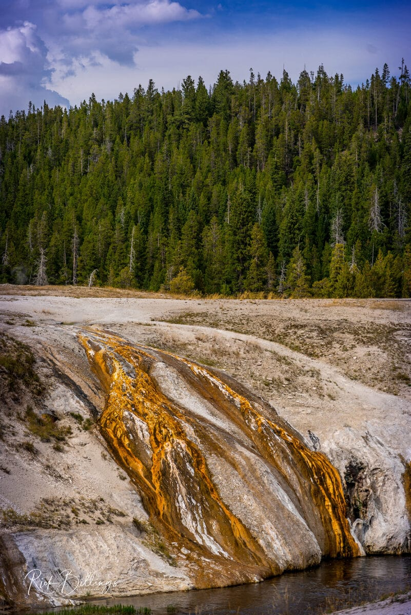 No 1049 20190820 Yellowstone