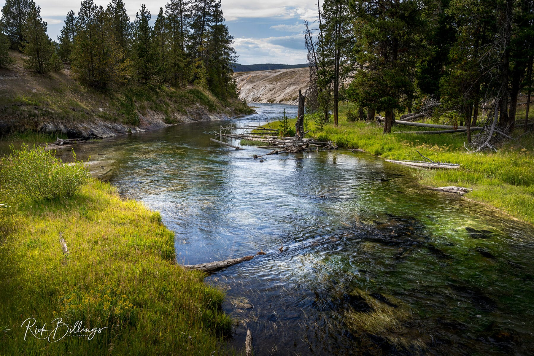 No 1054 20190820 Yellowstone River
