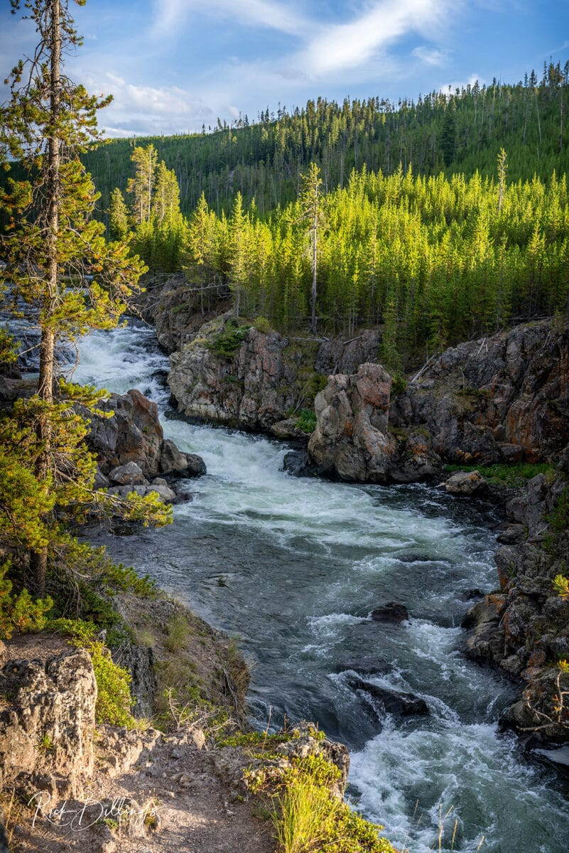 No 1056 20190820 Yellowstone River