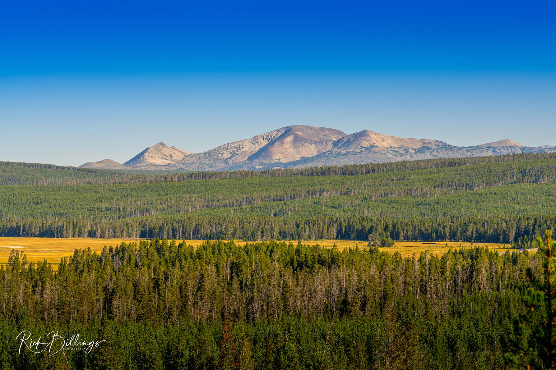 No 1081 20190821 Yellowstone Mountain Range