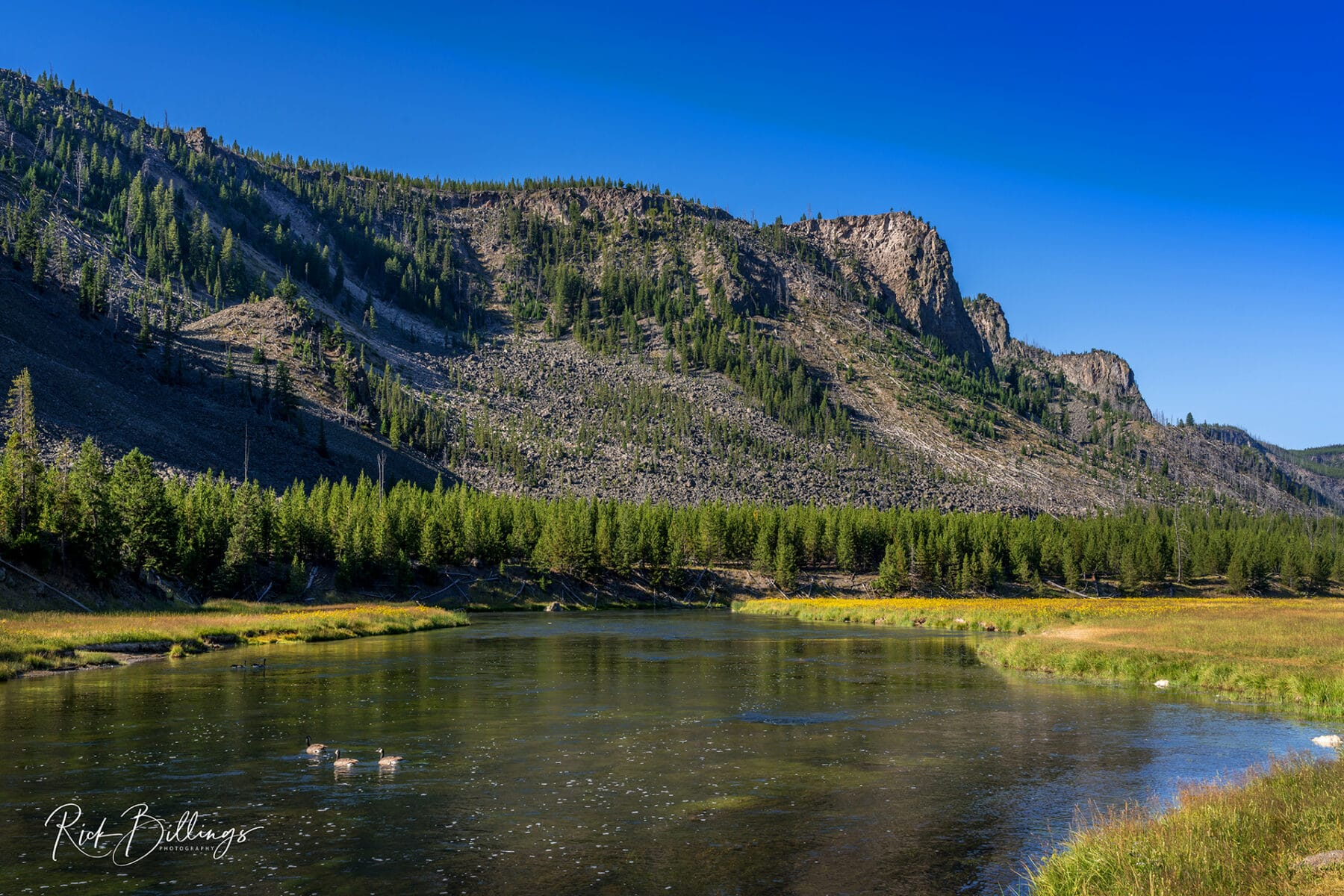 No 1083 20190821 Yellowstone River