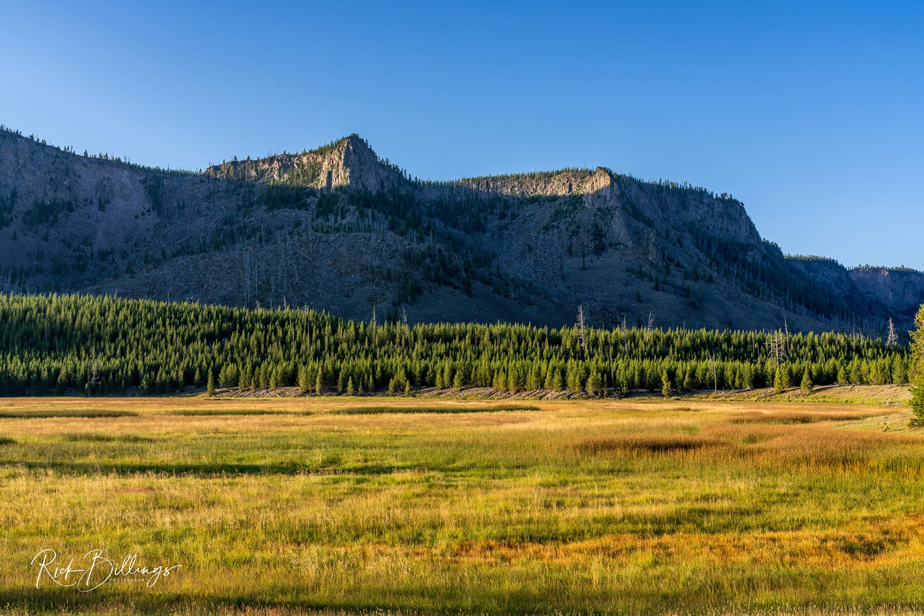 No 1085 20190821 Yellowstone Sunrise