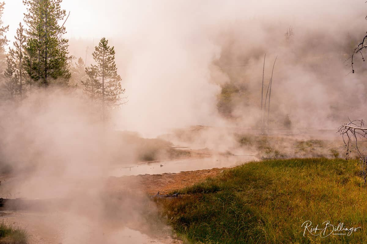 No 1331 20190821 Yellowstone