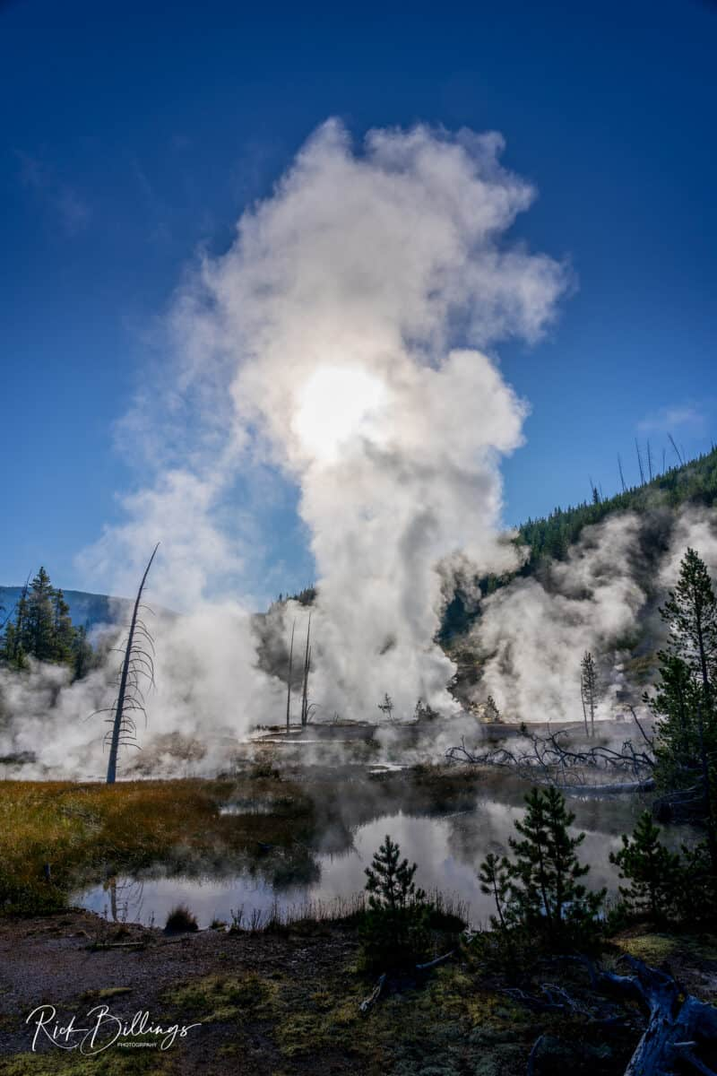 No 1335 20190821 Yellowstone