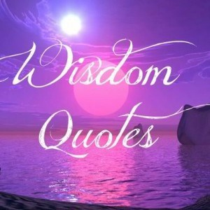 network marketing wisdom quotes